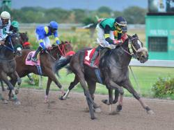 EDDIE'S PRINCESS (right, Paul Parchment) wins last Saturday's sixth race at Caymanas Park.