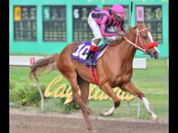 MR LFCH wins the eighth race at Caymanas Park on Saturday, February 8, 2020. The three-year-old colt is trained by Philip Feanny.