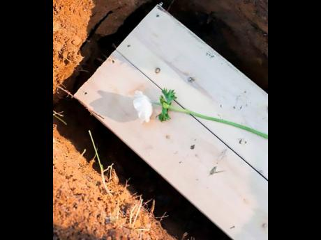 Backyard's coffin is placed in the grave.