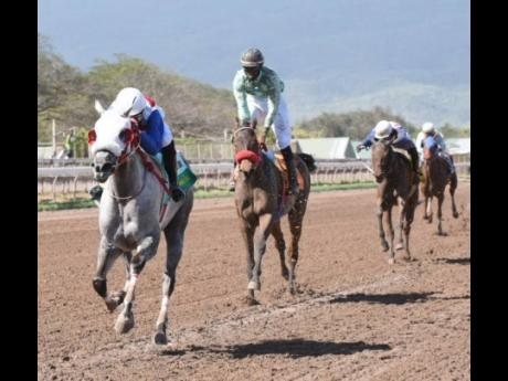 BAY TO GREY (left, Oshane Nugent) wins the sixth race at Caymanas Park yesterday.