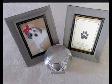 One of the memorabilia packages offered by Faithful Friends Pet Cremation Jamaica.