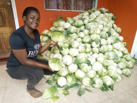 Farmer Girl Jessie is in search of market for her cabbage.